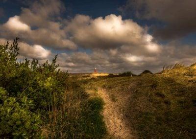 Texel - 4 seizoenen een prachtige omgeving bij T Eibernest (4)